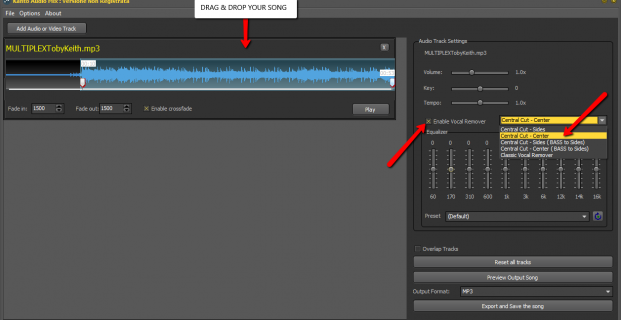 How to permanently remove singer voice from multiplex songs